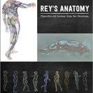 Rey's Anatomy: Figurative Art Lessons From the Classroom Hardcover