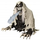 2' Wretched Reaper Fog Accessory prop haunted house prop