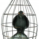 Crow In Cage Animated halloween scary prop haunted house prop