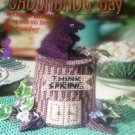 Groundhog Day Holiday Centerpiece Plastic Canvas Pattern House of White Birches