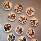 Coasters Butterflies & Hummers Hummingbird Cross Stitch Book 29 by Laura Doyle