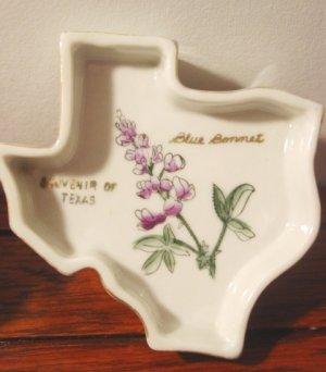 Texas vintage souvenir pin dish ashtray blue bonnets