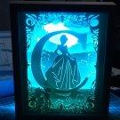 Cindarella  inspired papercut shadow box, night light digital templet, svg, pdf, scut5