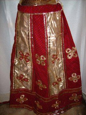 Beautiful Ethnic Skirt