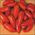 Federle heirloom roma tomato seeds