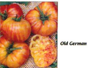 Old German tomato seeds bi-color heirloom