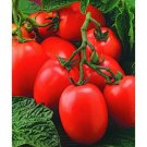 Window Box Roma tomato seeds
