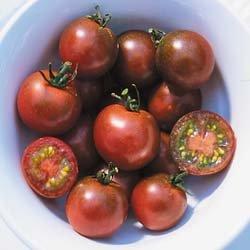 Brown Berry heirloom cherry  tomato seeds