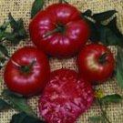 Giant Tree tomato seeds