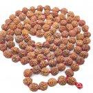 Rudraksha Jaap Mala for Pooja  (108+1 Beads)  (Astrology) (R1)