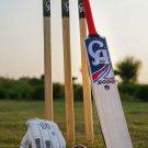 CA New Bat PLUS 5000 HARD BALL BAT - CRICKET HARD BALL BAT - Training Bat BRAND NEW BAT
