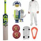 CRICKET BAT Batting Gloves Kit Abdominal & Arm Guard Balls Cricketer Package