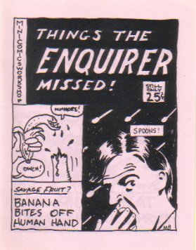 THINGS THE ENQUIRER MISSED mini-comic edited by D. Tosh