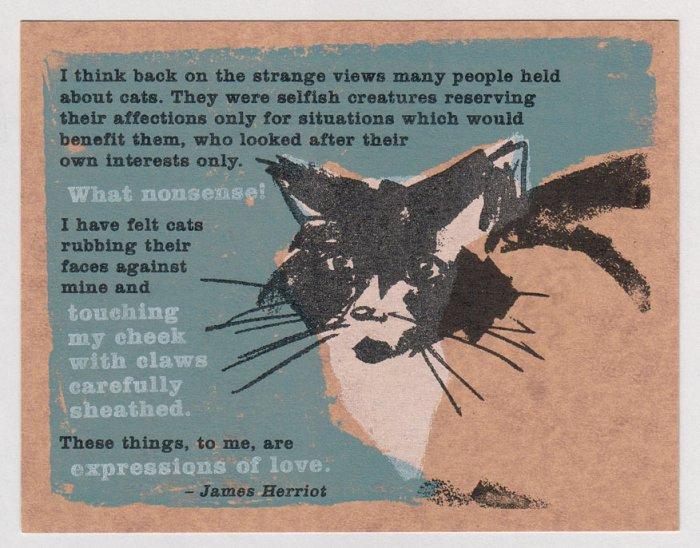 CAT silkscreen Gocco print JAMES HERRIOT Sean Bieri