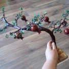 Miniature Pomegranate Tree, Fertility and Good Fortune Pomegranate Tree