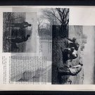 Running Fight ORIGINAL ART Found Object Photography Forest Park St. Louis Millet