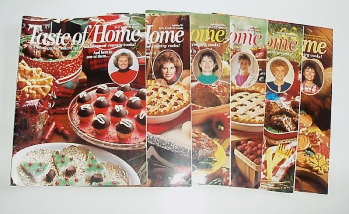 Taste Of Home 1995 Complete year EUC