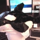 WHALE HAT COSTUME plush Save the whales head maskHalloween Costume ADULT kids ONE SIZE FITS MOST