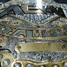 World Championship Wrestling Replica 4mm PLATES