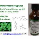 1oz Mint Synatra Fragrance