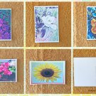 Assorted Floral Flowers Summer Garden Postcards Set of 5
