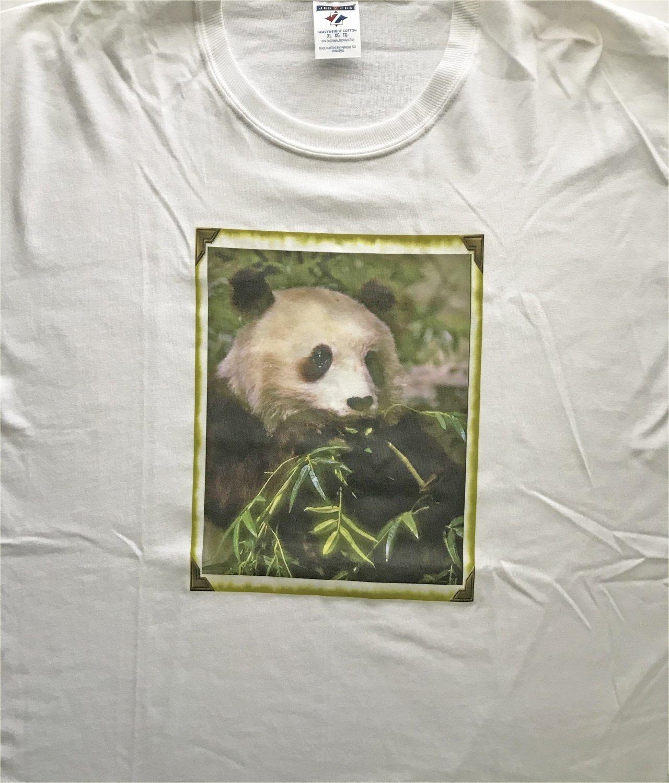Panda Bear Eating Bamboo Cotton T-Shirt XL