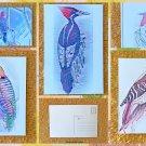 Assorted Woodpecker Postcards Set of 5
