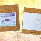 Mottled Duck Family Postcard