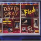 david gray : flesh CD 1994 virgin 10 tracks used near mint