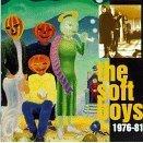 the soft boys : 1976 - 81 CD 2-disc set 1993 rykodisc -  used mint