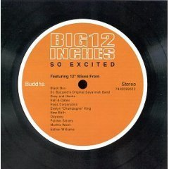 big 12 inches : so excited - various artists CD 1999 buddha BMG - used mint