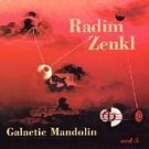 radim zenkl - galactic mandolin CD 1992 acoustic disc 13 tracks used mint