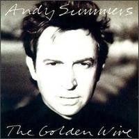 andy summers - the golden wire CD 1989 private music used mint