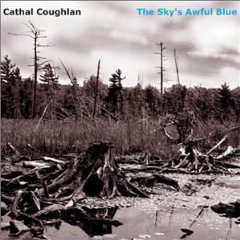 cathal coughlan - the sky's awful blue CD 2003 stop pop and roll beneath music used mint