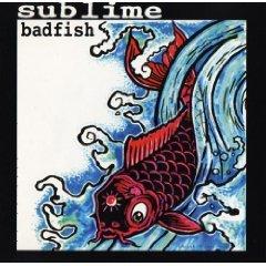 aublime - badfish CD ep 1995 skunk 4 tracks used mint