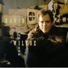 david wilcox - big horizon CD 1994 A&M 15 tracks used mint