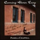 pamella chappell - coming down easy CD 1995 big blue water 12 tracks used mint