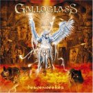 galloglass - heavenseeker CD + DVD 2005 LMP SPV limited edition used mint
