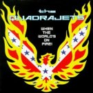 the quadrajets - when the world's on fire CD 1999 estrus used mint