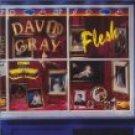 david gray : flesh CD 1994 virgin 10 tracks used mint