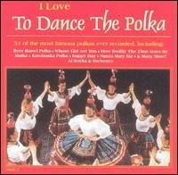 i love to dance the polka - al soyka & orchestra CD 1996 nesak international new