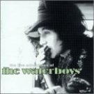 waterboys - live adventures of the waterboys CD 2-discs 1998 pilot used mint