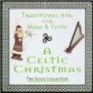 boys of the isle - traditional airs for harp & flute a celtic christmas CD fine tune new