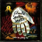 charlie sexton sextet - under the wishing tree CD 1995 MCA used mint barcode punched