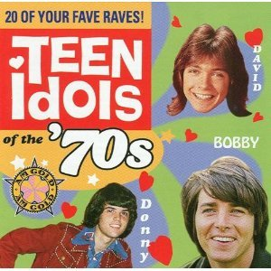 teen idols of the '70s - various artists CD 1999 polygram time life 20 tracks used mint