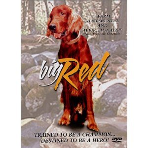big red - Walter Pidgeon Gilles Payant �mile Genest DVD 2002 anchor bay used mint