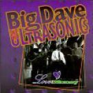 big dave and the ultrasonics - love & money CD 1993 schoolkids 14 tracks used mint