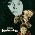 ladyhawke - matthew broderick DVD 1997 warner used mint
