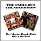 fabulous thunderbirds - fabulous thunderbirds / what's the word CD 1993 BGO