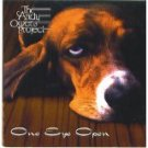 andy owens project - one eye open CD 1996 real records 10 tracks used mint